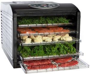 professiona-food-dryer