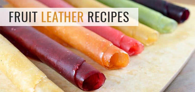 Food Dehydrator Recipes Fruit Leather