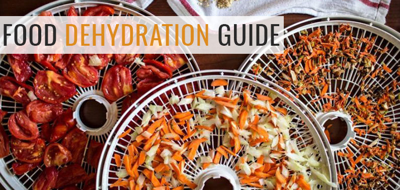 Food Dehydration process