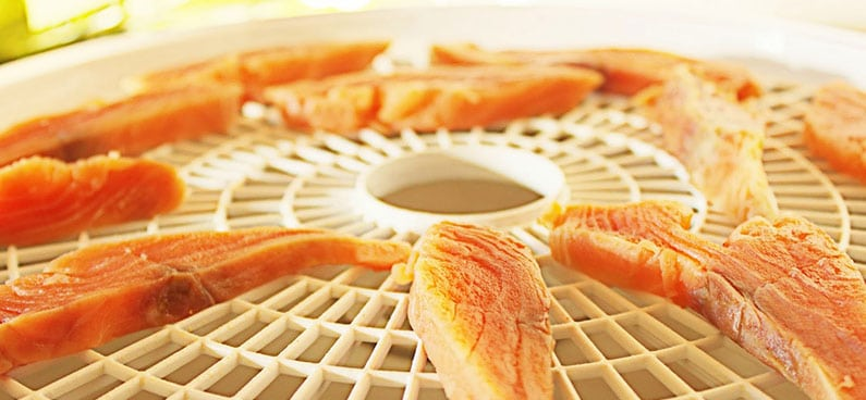 dehydrated salmon