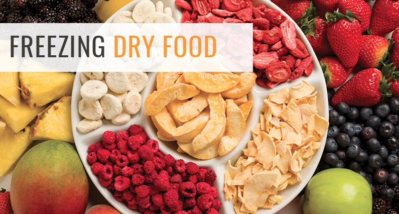 freezing dry food featured & How to Freeze Dry Food For Long Term Storage? - Dehydrator Spot