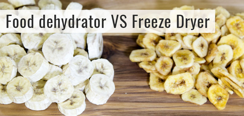 Food Dehydrator vs. Freeze Dryer – Which Is Better?