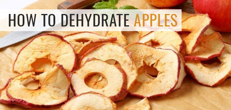 Ultimate Guide to Dehydrating Apples: Healthy Snack Made Easy