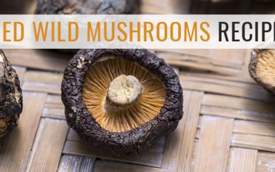 8 Delicious Dried Wild Mushrooms Recipes