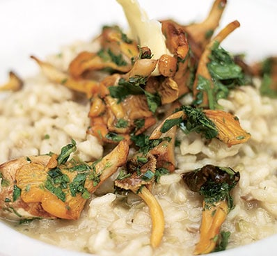 Dried Wild Mushrooms Risotto