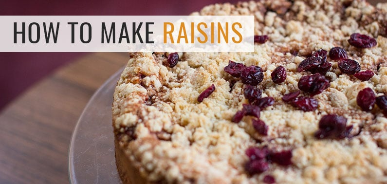 How to Make Raisins (Dehydrated Grapes)