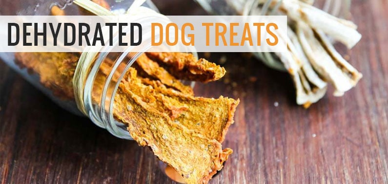 Healthy Dog Treats with a Dehydrator