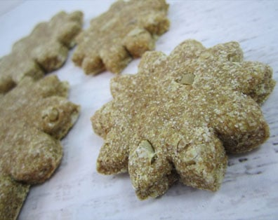 dog treats with sunflower seeds