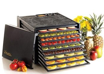 Excalibur 9-Tray 3926TB Food Dehydrator Review