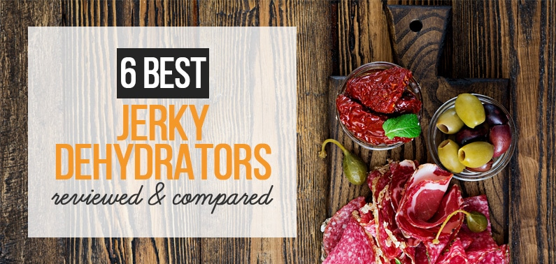 6 best dehydrator for jerky featured image