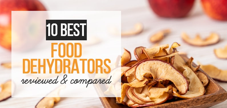 Best Food Dehydrators - featured image