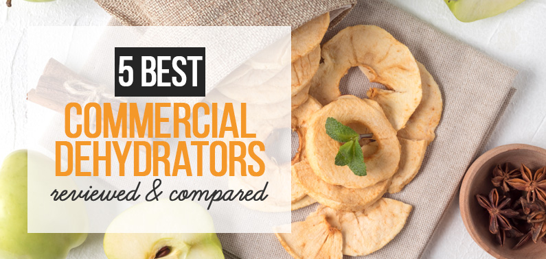 Best Commercial Food Dehydrator, featured image
