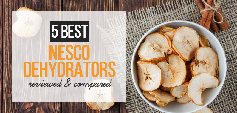 Best Nesco Food Dehydrator
