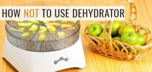 11 Things You Shouldn't do when Using Dehydrator